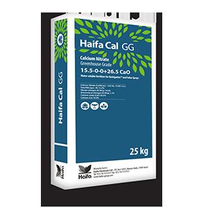 Haifa-Cal-GG