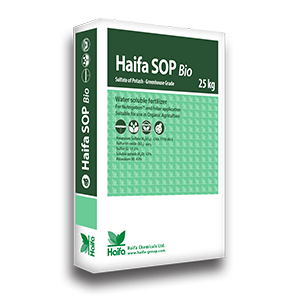 Haifa-SOP-Bio