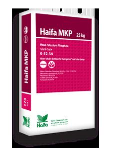 Haifa_MKP